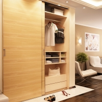 Modern wardrobe in living room